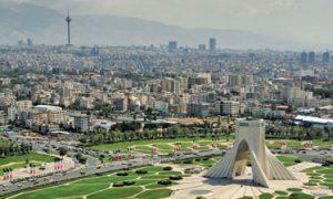 فروش شمشاد طلایی در تهران